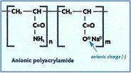 Zeroday Enterprises Anionic Polyacrylamide